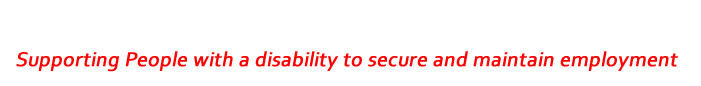 EmployAbility Service Galway